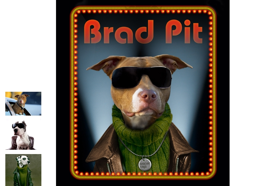 Brad Pit-Graphic for various media